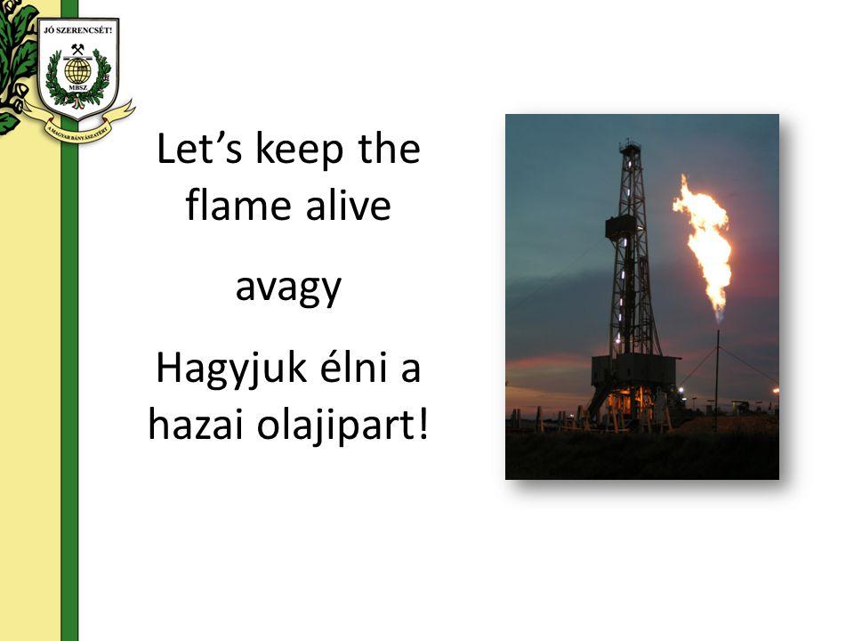 Let's keep the flame alive avagy Hagyjuk élni a hazai olajipart!