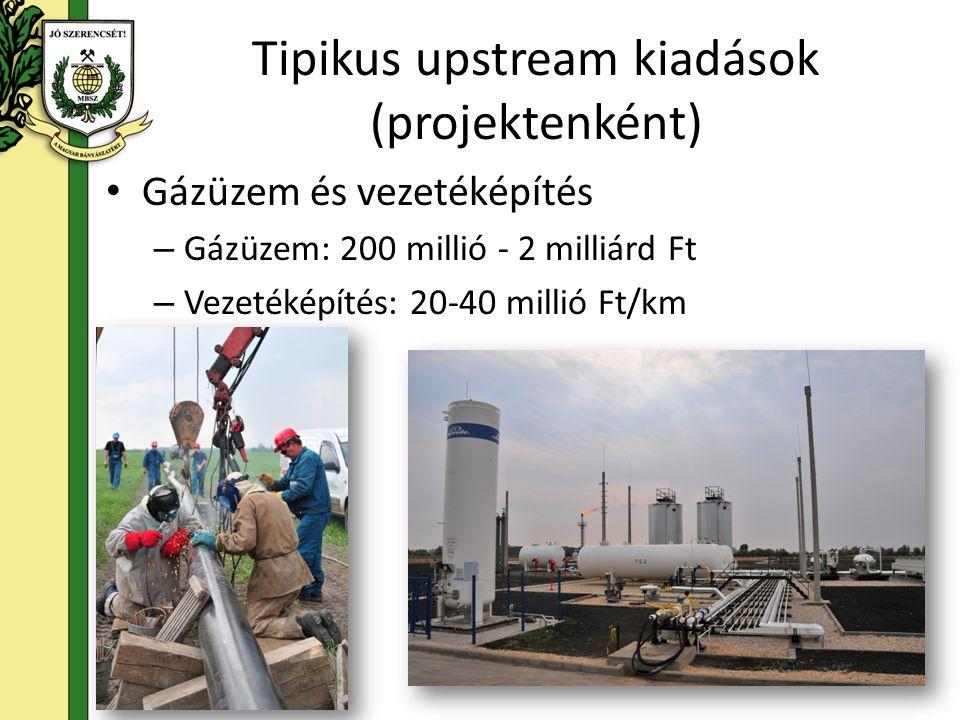 Finanszírozási sajátosságok Jelentős idő- és pénzbefektetés – Az első bevételig minimum 36-48 hónap telik el – Minimum befektetés: 6-7 milliárd Ft, ám ez lényegesen magasabb is lehet (50-100 mrd Ft) Nagy kockázatú befektetés: lehet, hogy a végén a megtérülés nulla Magyarországon az ilyen nagy kockázatú projektekre lényegében nincs tőke, ezért ennek a pénznek külföldről kell jönnie