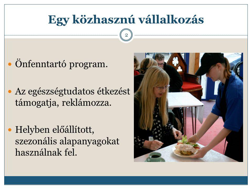 Egy közhasznú vállalkozás Önfenntartó program. Az egészségtudatos étkezést támogatja, reklámozza.