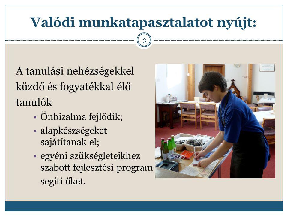 Valódi munkatapasztalatot nyújt: A tanulási nehézségekkel küzdő és fogyatékkal élő tanulók Önbizalma fejlődik; alapkészségeket sajátítanak el; egyéni szükségleteikhez szabott fejlesztési program segíti őket.