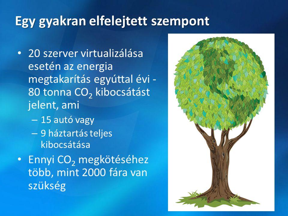 Egy gyakran elfelejtett szempont 20 szerver virtualizálása esetén az energia megtakarítás egyúttal évi - 80 tonna CO 2 kibocsátást jelent, ami – 15 autó vagy – 9 háztartás teljes kibocsátása Ennyi CO 2 megkötéséhez több, mint 2000 fára van szükség
