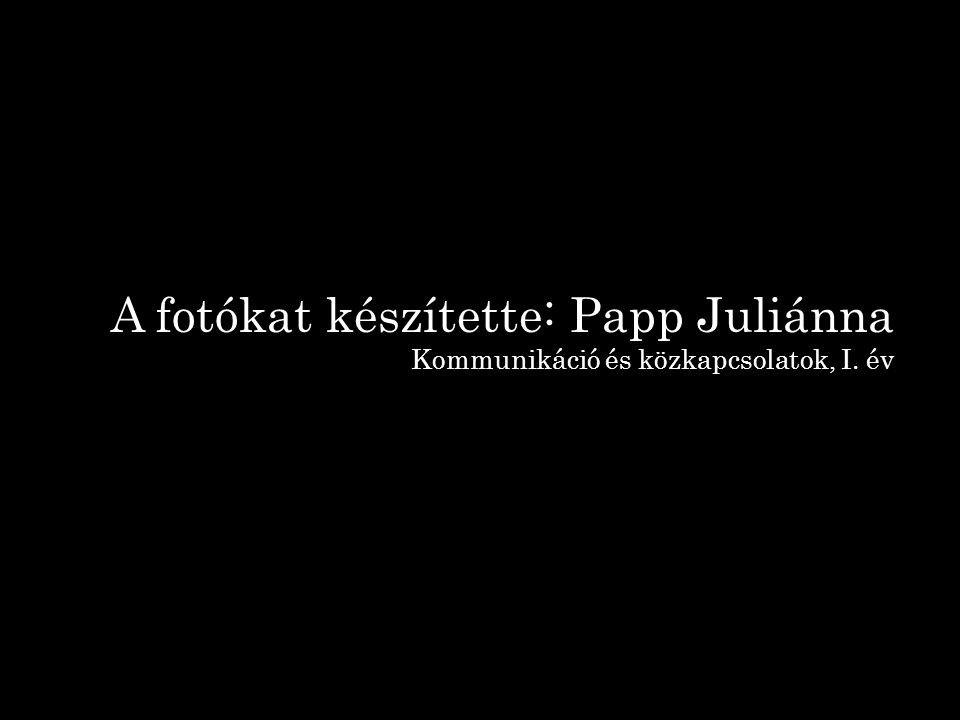 A fotókat készítette: Papp Juliánna Kommunikáció és közkapcsolatok, I. év