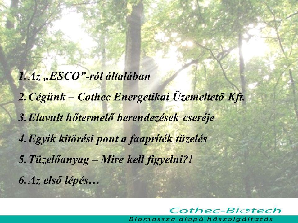 """1.Az """"ESCO""""-ról általában 2.Cégünk – Cothec Energetikai Üzemeltető Kft. 3.Elavult hőtermelő berendezések cseréje 4.Egyik kitörési pont a faapríték tüz"""