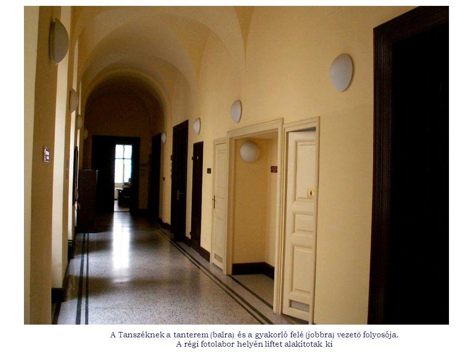 A Tanszéknek a tanterem (balra) és a gyakorló felé (jobbra) vezető folyosója.