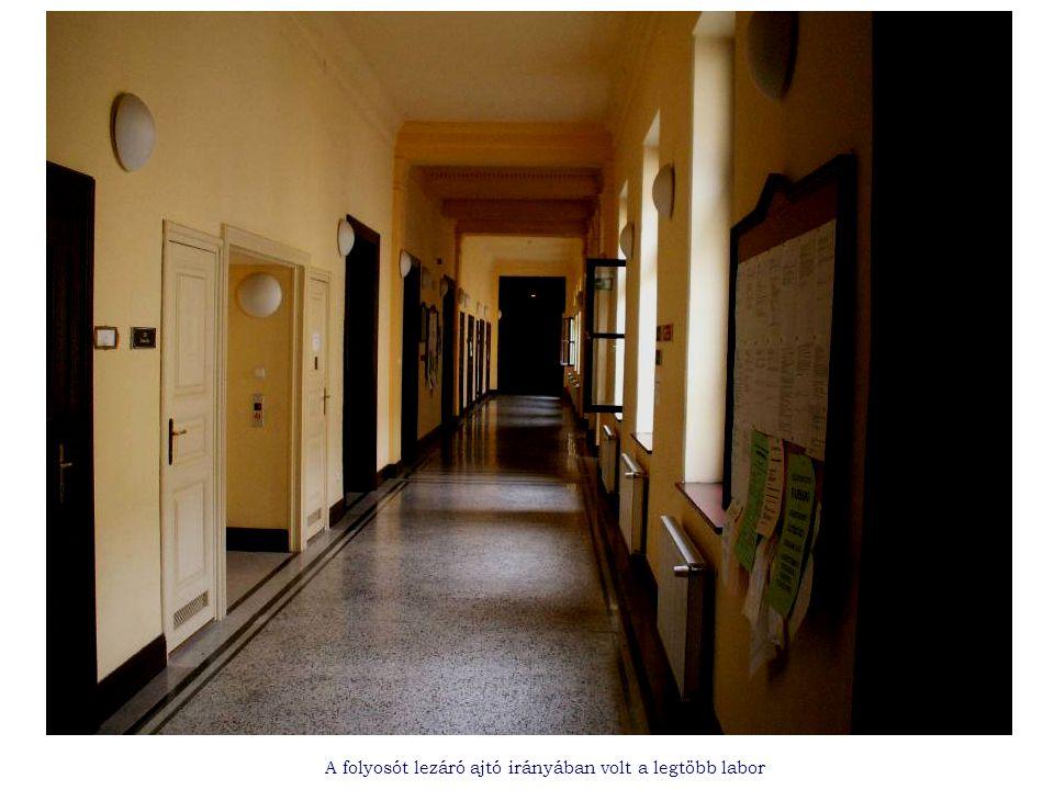 A folyosót lezáró ajtó irányában volt a legtöbb labor