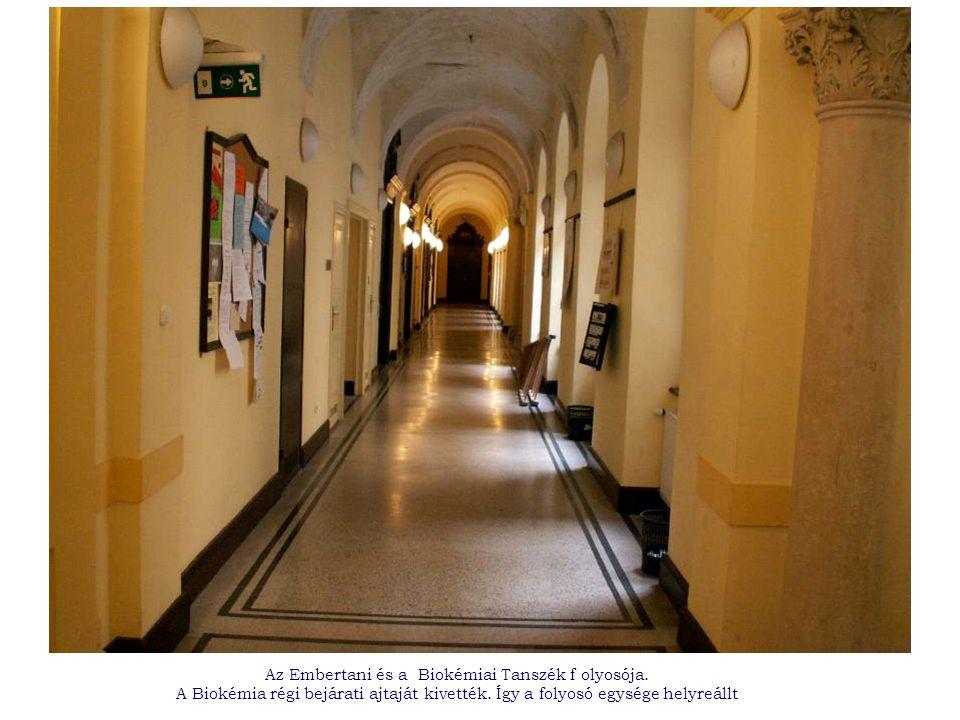 Az Embertani és a Biokémiai Tanszék f olyosója. A Biokémia régi bejárati ajtaját kivették.