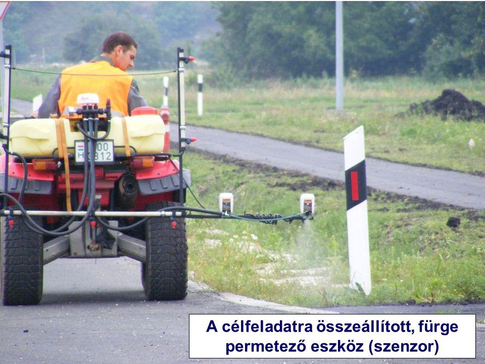 Herbicid-toleráns napraforgó (nem GMO)