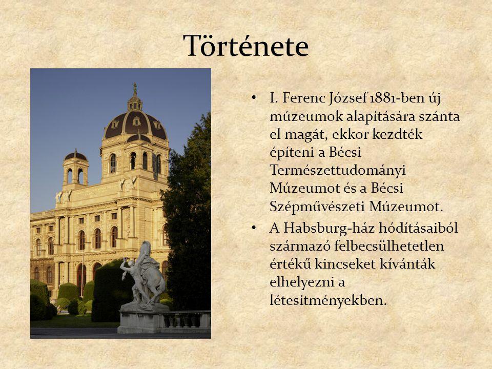 Története I. Ferenc József 1881-ben új múzeumok alapítására szánta el magát, ekkor kezdték építeni a Bécsi Természettudományi Múzeumot és a Bécsi Szép