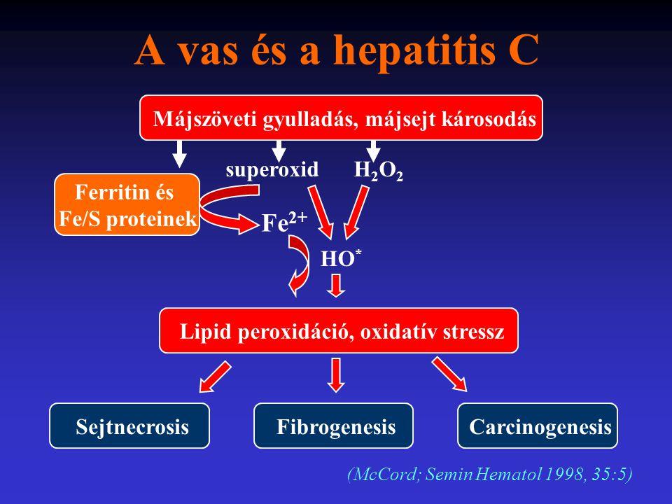 A vas és a hepatitis C Májszöveti gyulladás, májsejt károsodás Ferritin és Fe/S proteinek Lipid peroxidáció, oxidatív stressz Sejtnecrosis Fibrogenesi
