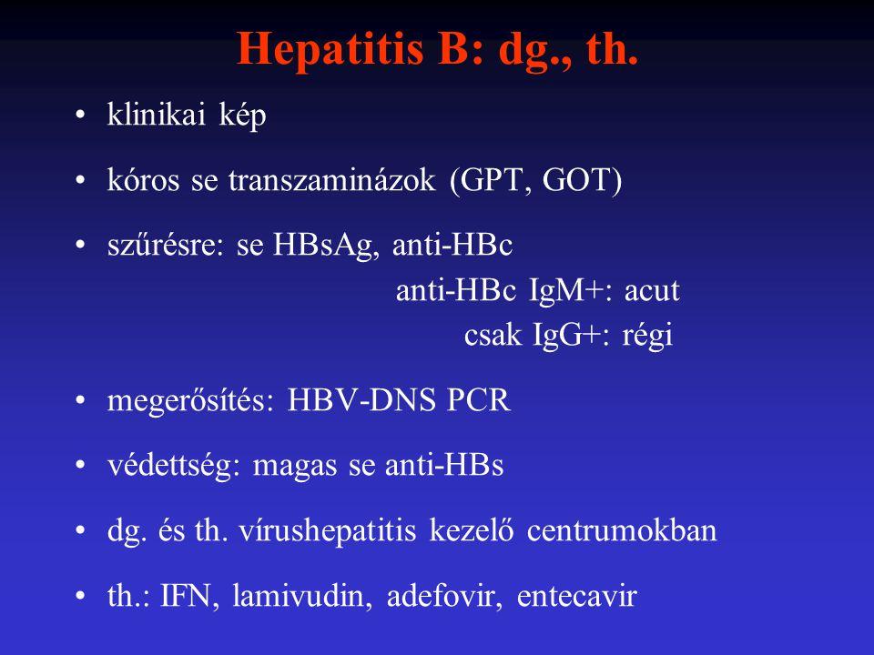 Hepatitis B: dg., th. klinikai kép kóros se transzaminázok (GPT, GOT) szűrésre: se HBsAg, anti-HBc anti-HBc IgM+: acut csak IgG+: régi megerősítés: HB