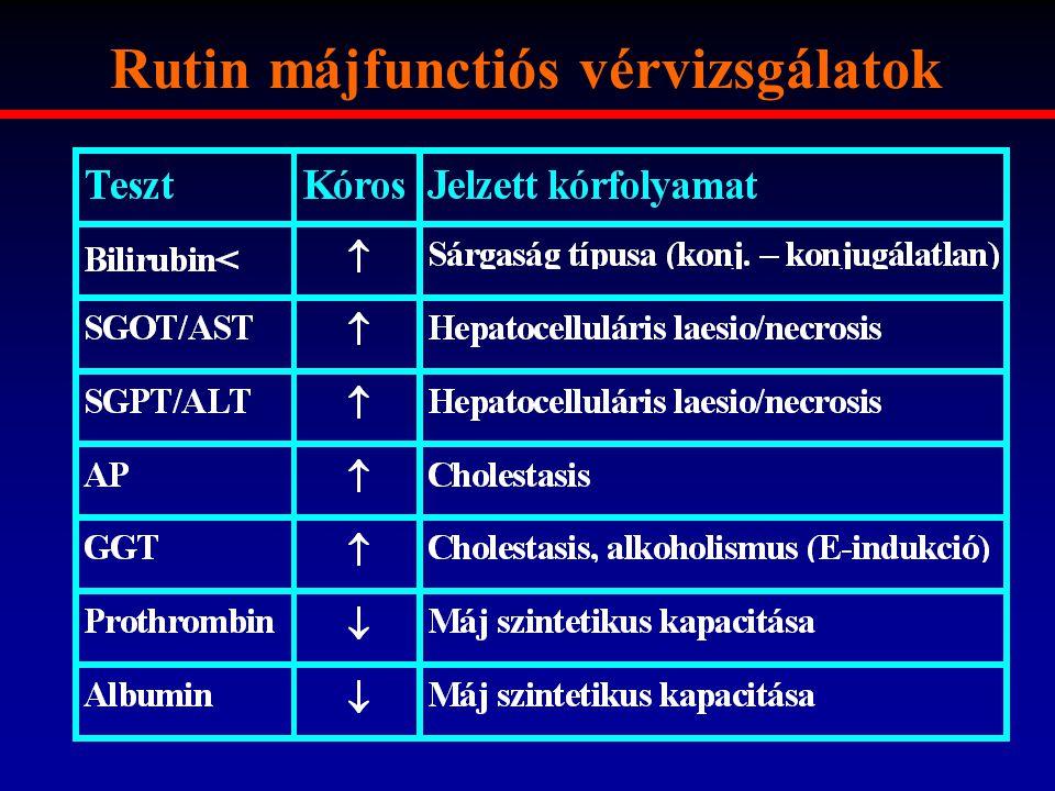 Rutin májfunctiós vérvizsgálatok