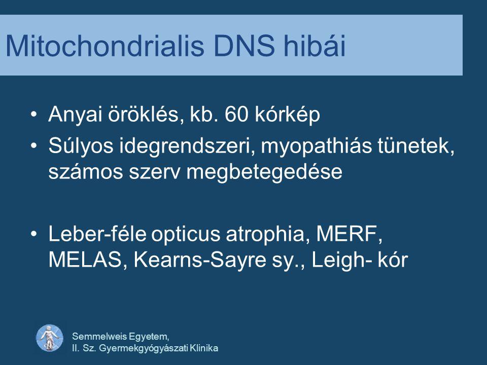Semmelweis Egyetem, II.Sz. Gyermekgyógyászati Klinika Mitochondrialis DNS hibái Anyai öröklés, kb.