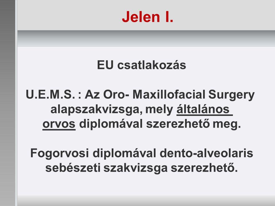 Jelen I. EU csatlakozás U.E.M.S.