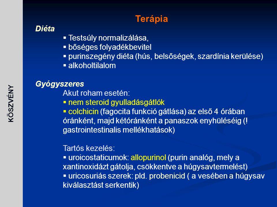 Terápia Diéta  Testsúly normalizálása,  bőséges folyadékbevitel  purinszegény diéta (hús, belsőségek, szardínia kerülése)  alkoholtilalom Gyógysze