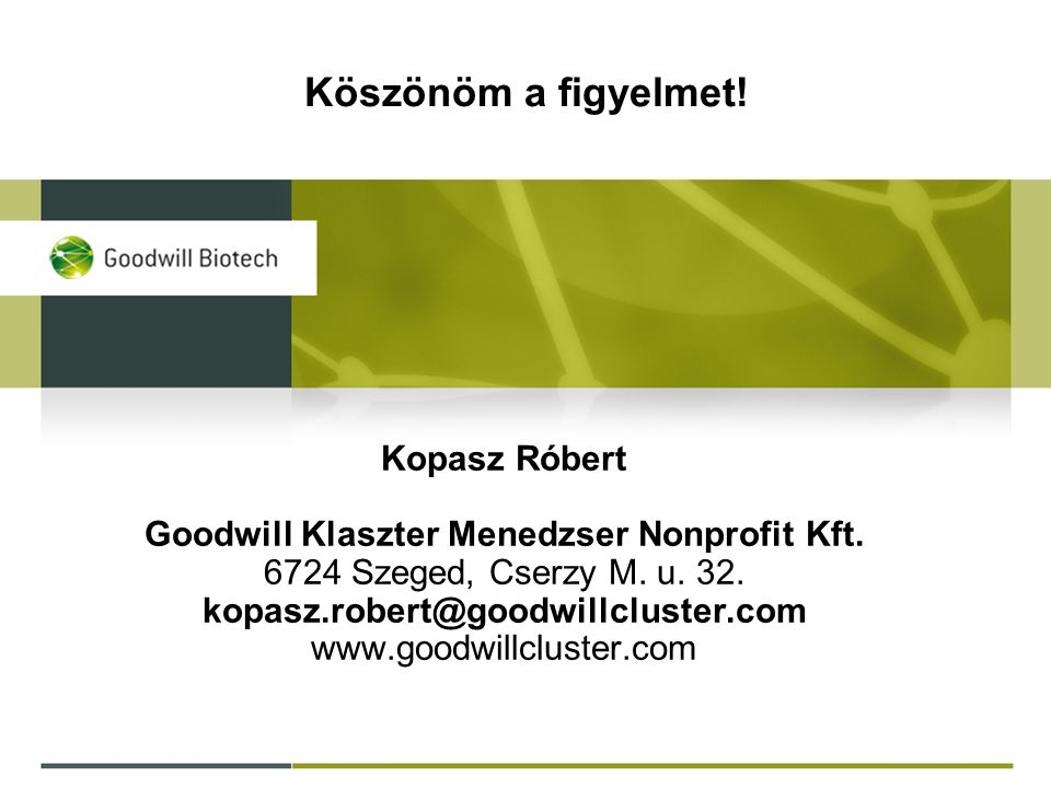Kopasz Róbert Goodwill Klaszter Menedzser Nonprofit Kft.