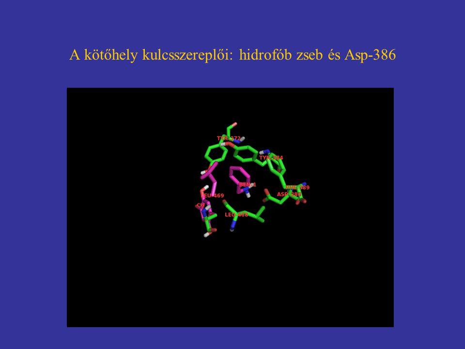ÖSSZEFOGLALÁS i) Humán biobank létrehozása és analízise (VAP-1/SSAO) ii) VAP-1 inhibitor terápiás célra történő fejlesztése a) Molekulatervezés és szintézis, in vitro in vivo (állat) vizsgálatok – egy vegyület részletes vizsgálata b) Új alkalmazás ('Old drug – New application') Fázis II klinikai vizsgálat