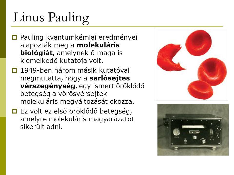 Linus Pauling  Pauling kvantumkémiai eredményei alapozták meg a molekuláris biológiát, amelynek ő maga is kiemelkedő kutatója volt.  1949-ben három