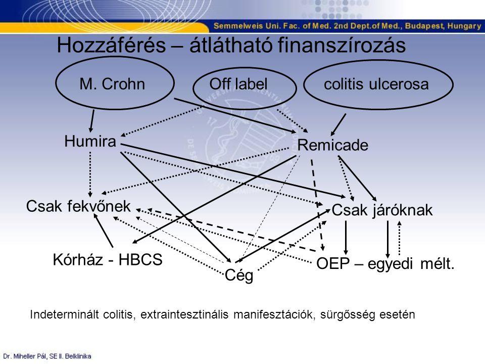 Leletek HIV Hepatitis Mantoux Mellkas rtg Hasi UH Stb…..