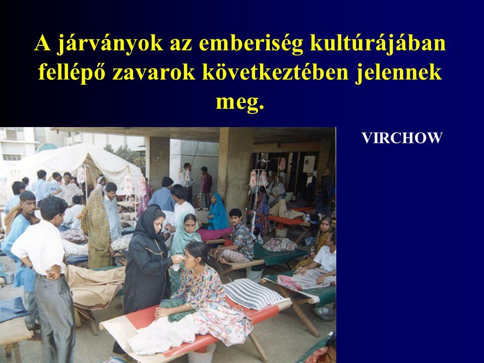 A járványok az emberiség kultúrájában fellépő zavarok következtében jelennek meg. VIRCHOW