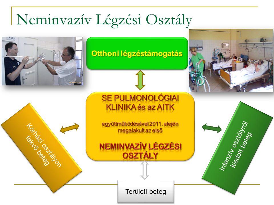 Kórházi osztályon fekvő beteg Területi beteg Intenzív osztályról kiadott beteg Neminvazív Légzési Osztály