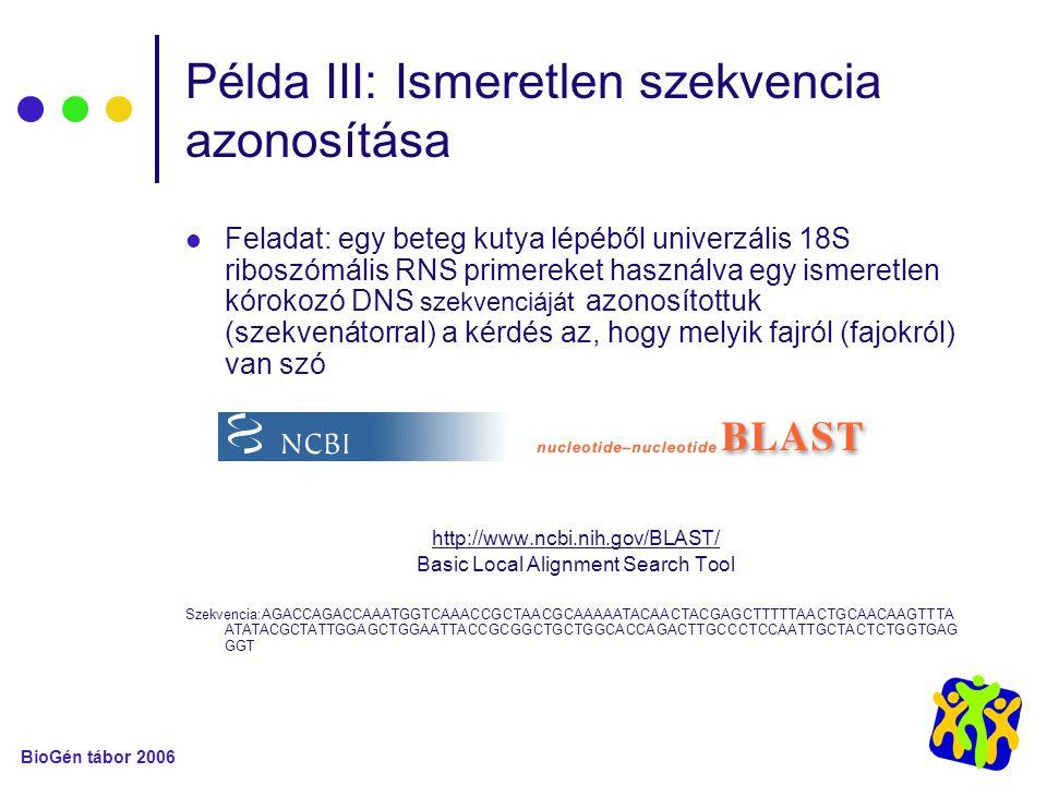 Példa III: Ismeretlen szekvencia azonosítása Feladat: egy beteg kutya lépéből univerzális 18S riboszómális RNS primereket használva egy ismeretlen kórokozó DNS szekvenciáját azonosítottuk (szekvenátorral) a kérdés az, hogy melyik fajról (fajokról) van szó http://www.ncbi.nih.gov/BLAST/ Basic Local Alignment Search Tool Szekvencia:AGACCAGACCAAATGGTCAAACCGCTAACGCAAAAATACAACTACGAGCTTTTTAACTGCAACAAGTTTA ATATACGCTATTGGAGCTGGAATTACCGCGGCTGCTGGCACCAGACTTGCCCTCCAATTGCTACTCTGGTGAG GGT