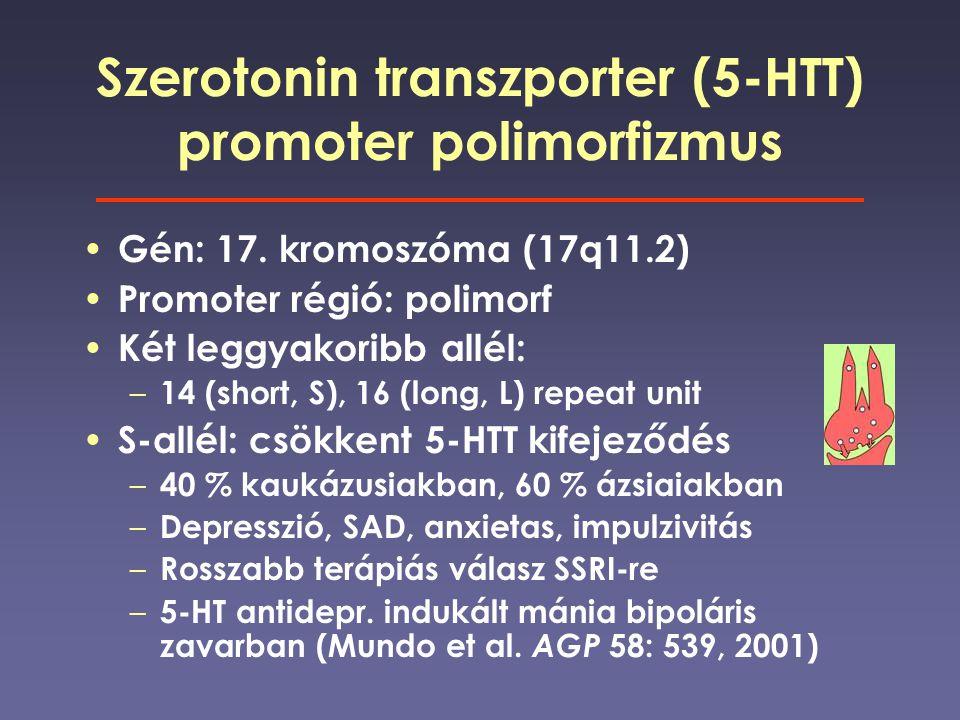 Szerotonin transzporter (5-HTT) promoter polimorfizmus Gén: 17. kromoszóma (17q11.2) Promoter régió: polimorf Két leggyakoribb allél: – 14 (short, S),