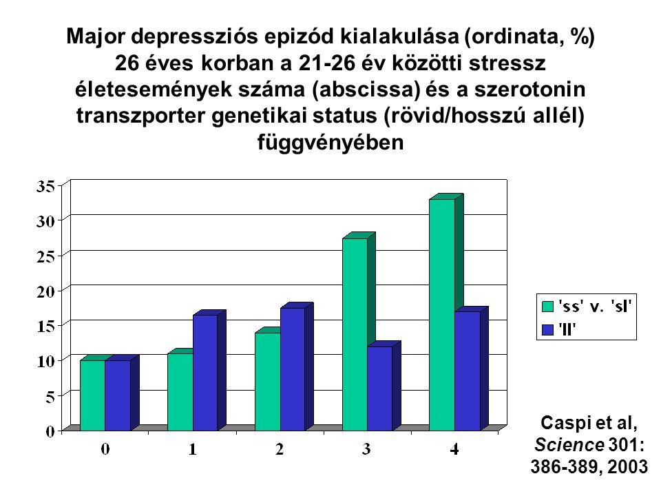 Major depressziós epizód kialakulása (ordinata, %) 26 éves korban a 21-26 év közötti stressz életesemények száma (abscissa) és a szerotonin transzport