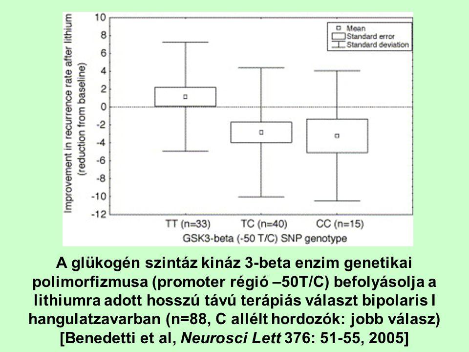 A glükogén szintáz kináz 3-beta enzim genetikai polimorfizmusa (promoter régió –50T/C) befolyásolja a lithiumra adott hosszú távú terápiás választ bip