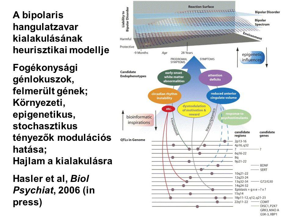 A bipolaris hangulatzavar kialakulásának heurisztikai modellje Fogékonysági génlokuszok, felmerült gének; Környezeti, epigenetikus, stochasztikus tény