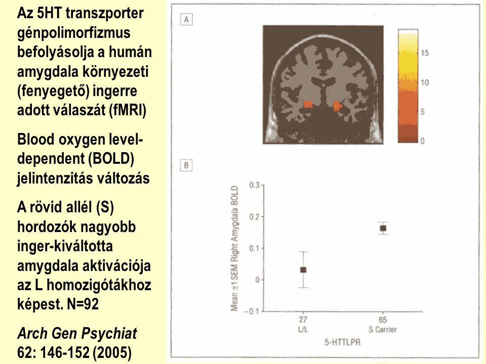 Az 5HT transzporter génpolimorfizmus befolyásolja a humán amygdala környezeti (fenyegető) ingerre adott válaszát (fMRI) Blood oxygen level- dependent