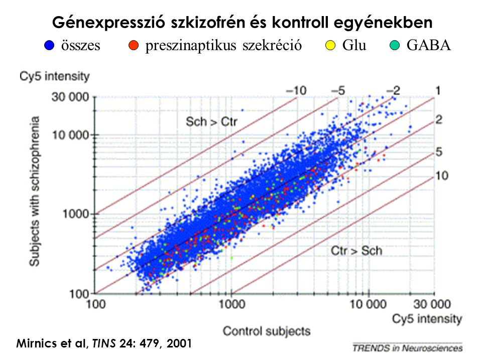 Génexpresszió szkizofrén és kontroll egyénekben összespreszinaptikus szekrécióGluGABA Mirnics et al, TINS 24: 479, 2001