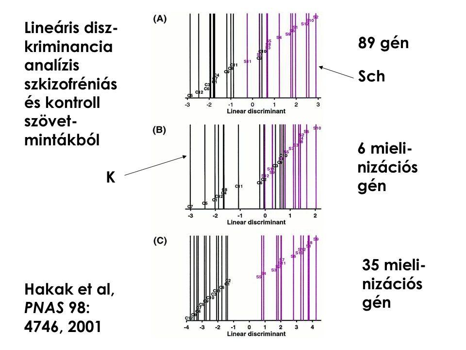 Lineáris disz- kriminancia analízis szkizofréniás és kontroll szövet- mintákból Hakak et al, PNAS 98: 4746, 2001 89 gén 6 mieli- nizációs gén 35 mieli