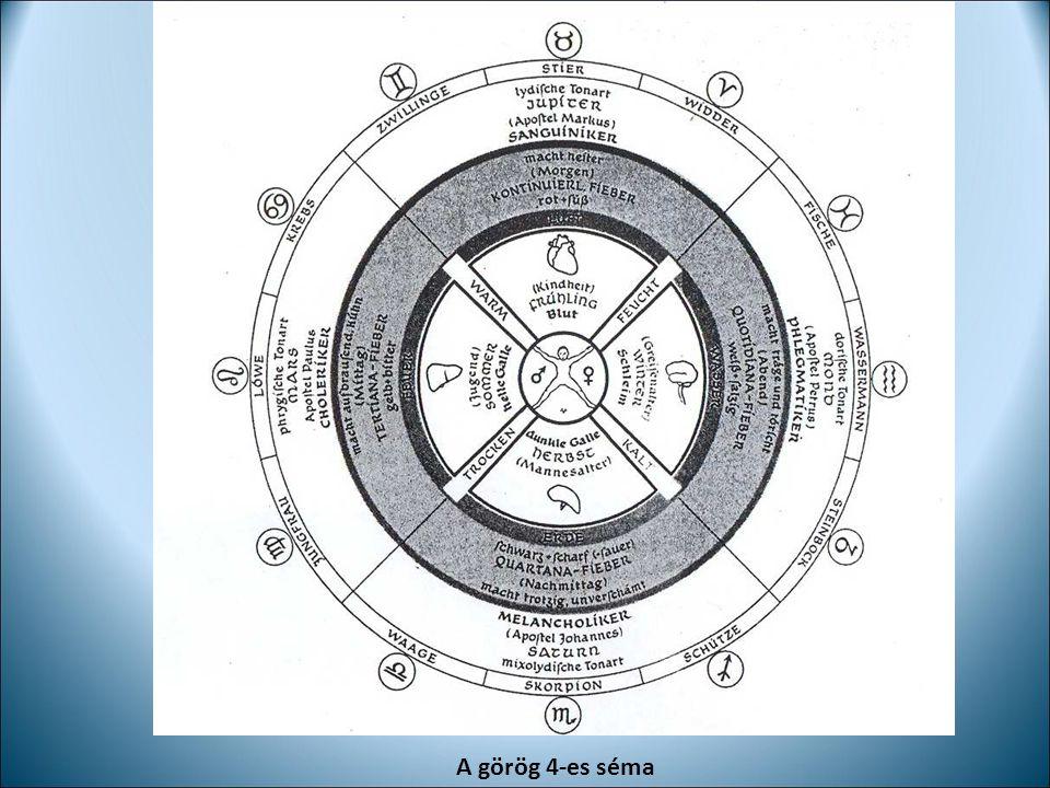 Az emberi szervezet három funkcionális tere az AO-ban Érzékszerv- idegrendszer Ritmikus rendszer Anyagcsere- végtag-rendszer J.W.