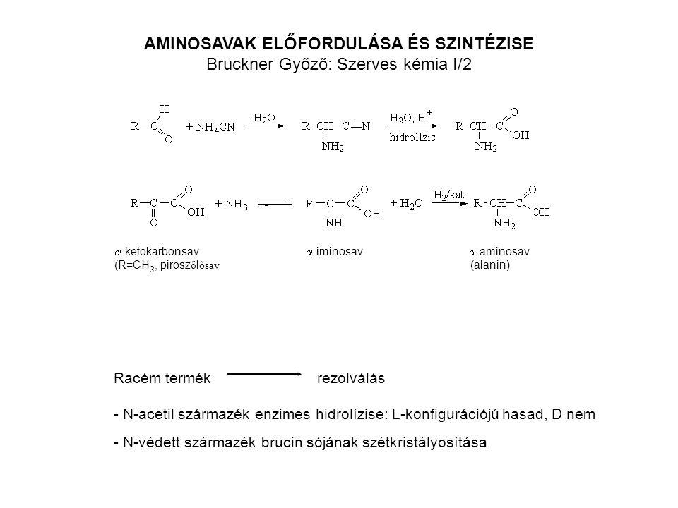 AMINOSAVAK ELŐFORDULÁSA ÉS SZINTÉZISE Bruckner Győző: Szerves kémia I/2  - ketokarbonsav  - iminosav  - aminosav (R=CH 3, pirosz ő l ősav (alanin)