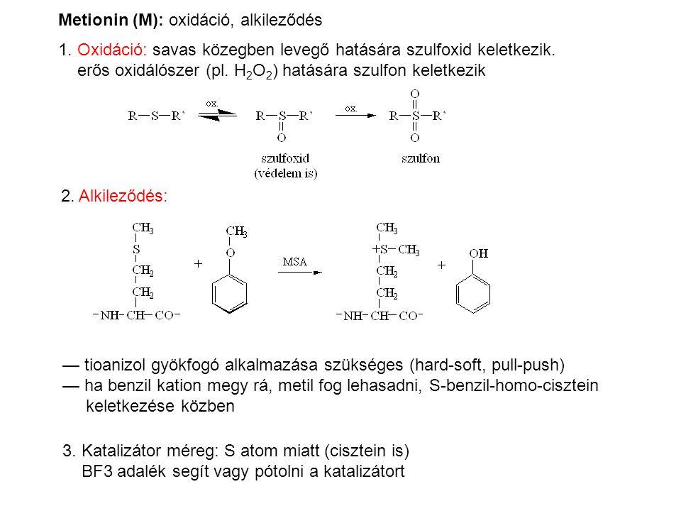Metionin (M): oxidáció, alkileződés 1. Oxidáció: savas közegben levegő hatására szulfoxid keletkezik. erős oxidálószer (pl. H 2 O 2 ) hatására szulfon