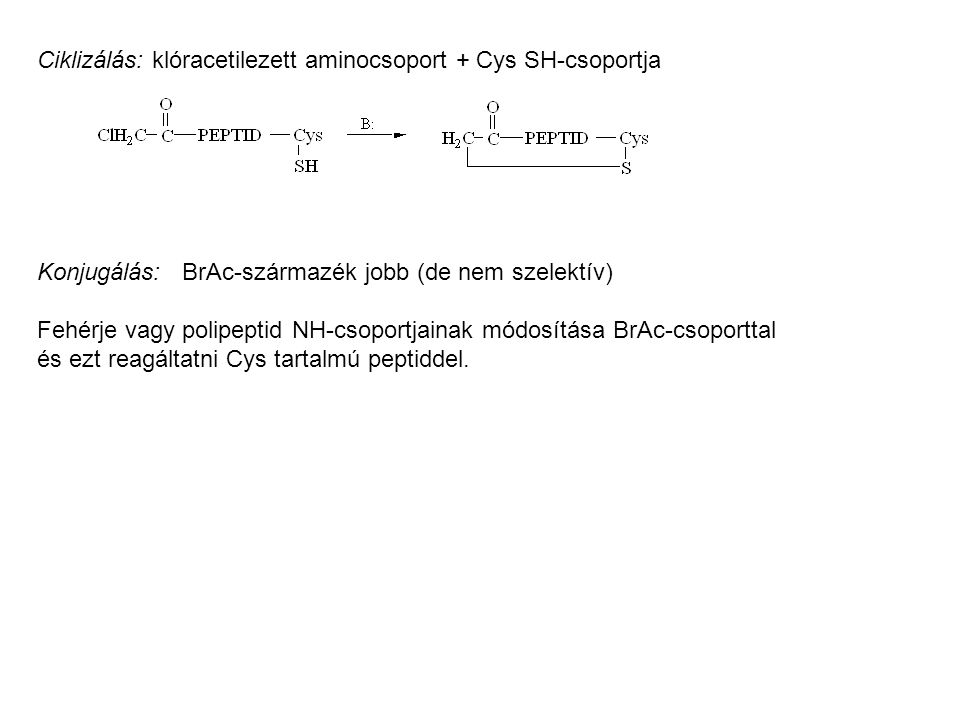 Ciklizálás: klóracetilezett aminocsoport + Cys SH-csoportja Konjugálás: BrAc-származék jobb (de nem szelektív) Fehérje vagy polipeptid NH-csoportjainak módosítása BrAc-csoporttal és ezt reagáltatni Cys tartalmú peptiddel.
