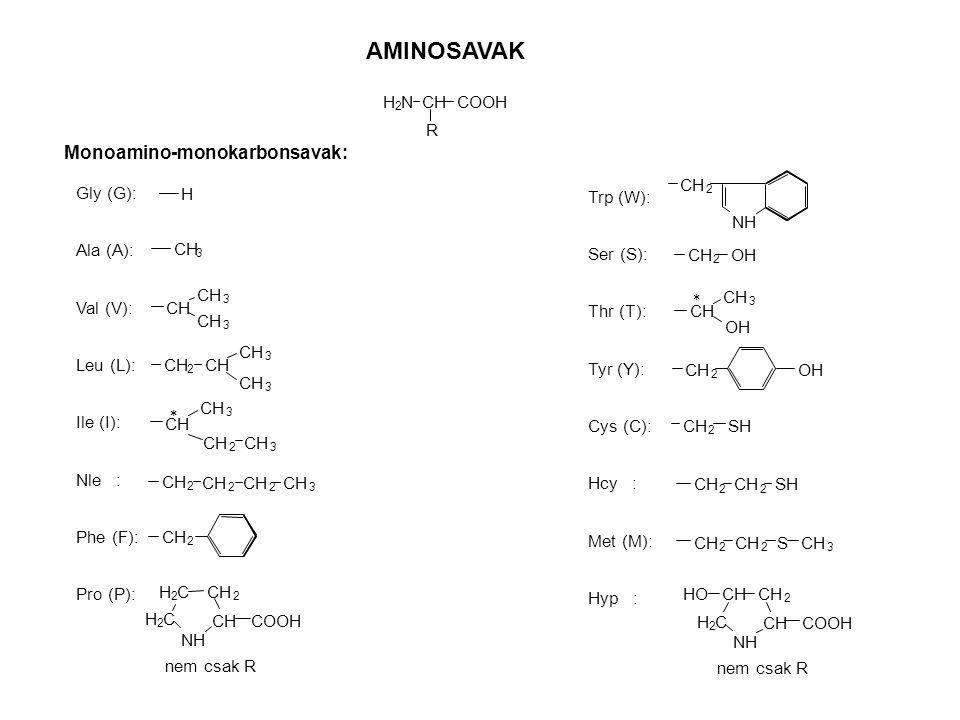 AMINOSAVAK CH R H 2 NCOOH Monoamino-monokarbonsavak: Gly (G): Ala (A): Val (V): Leu (L): Ile (I): Nle : Phe (F): Pro (P): H CH 3 3 3 2 3 3 3 2 3 * 2 2