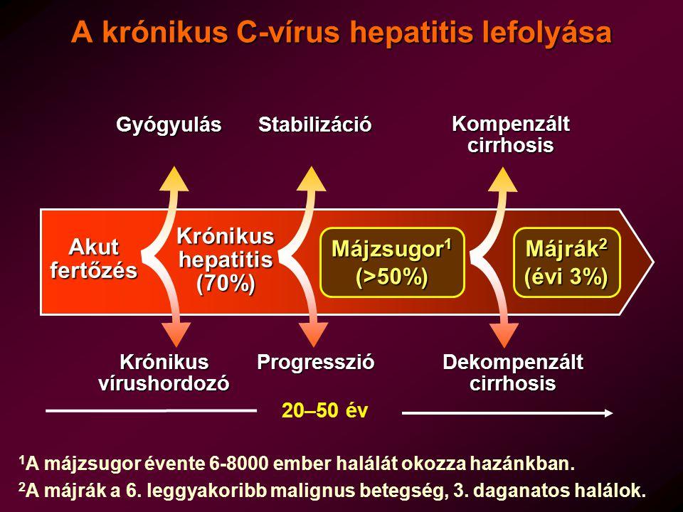 A krónikus C-vírus hepatitis lefolyása Akut fertőzés Krónikus vírushordozó Gyógyulás Gyógyulás 20–50 év Krónikus hepatitis (70%) Stabilizáció Progresszió Májzsugor 1 (>50%) Kompenzált cirrhosis Dekompenzált cirrhosis 1 A májzsugor évente 6-8000 ember halálát okozza hazánkban.