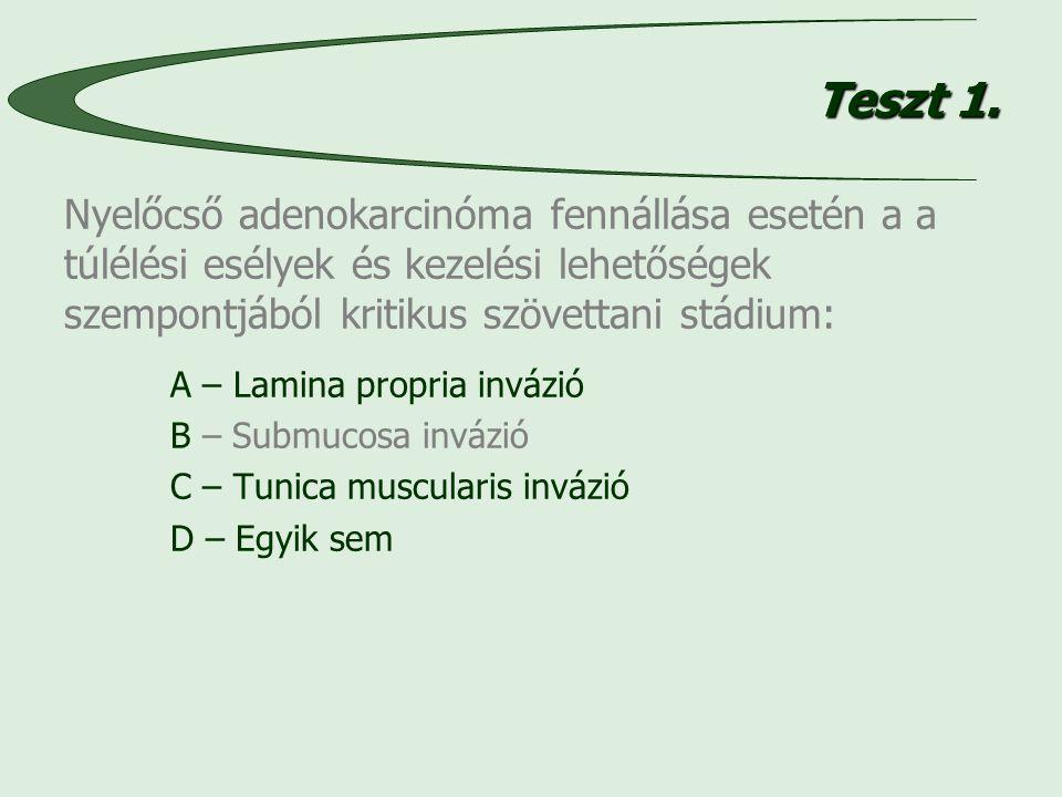 Teszt 1.