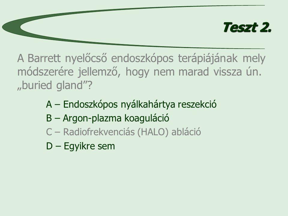 Teszt 2.