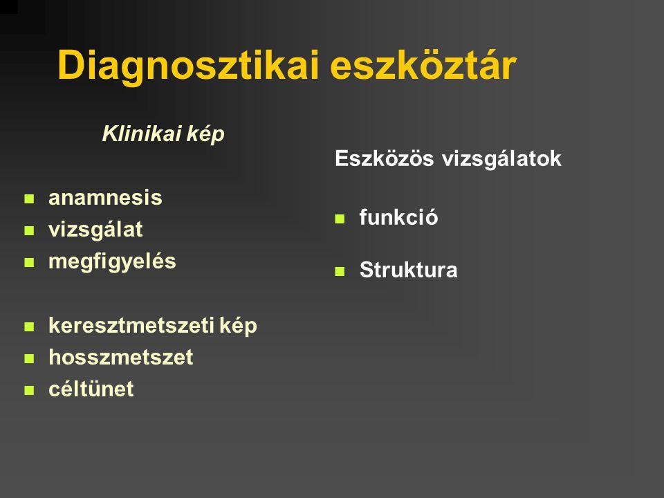 Klinikai kép anamnesis vizsgálat megfigyelés keresztmetszeti kép hosszmetszet céltünet Eszközös vizsgálatok funkció Struktura Diagnosztikai eszköztár
