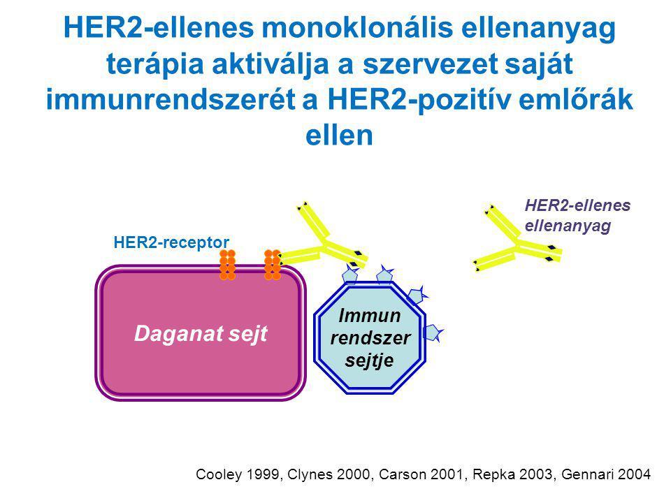 HER2-ellenes monoklonális ellenanyag terápia aktiválja a szervezet saját immunrendszerét a HER2-pozitív emlőrák ellen Daganat sejt HER2-receptor HER2-