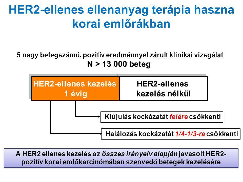HER2-ellenes ellenanyag terápia haszna korai emlőrákban 5 nagy betegszámú, pozitív eredménnyel zárult klinikai vizsgálat N > 13 000 beteg A HER2 ellen