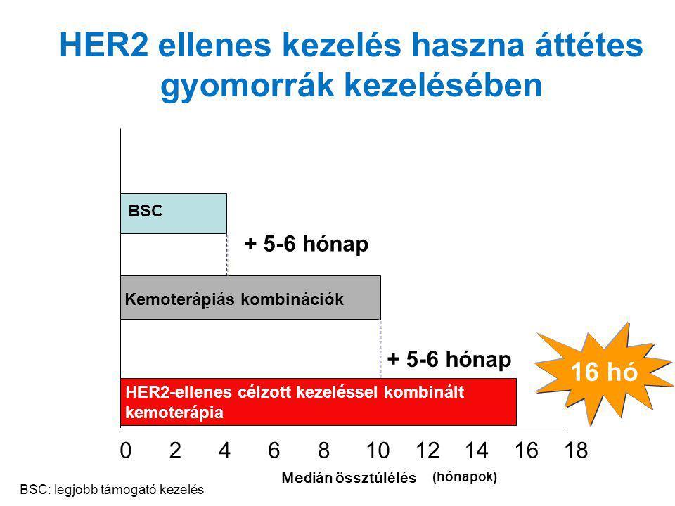 Medi á n össztúlélés BSC 024681012141618 HER2 ellenes kezelés haszna áttétes gyomorrák kezelésében (hónapok) Kemoterápiás kombinációk + 5-6 hónap HER2