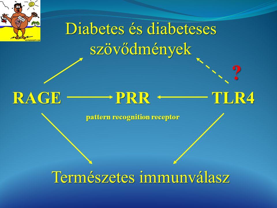 RAGETLR4 Diabetes és diabeteses szövődmények Természetes immunválasz PRR pattern recognition receptor ?