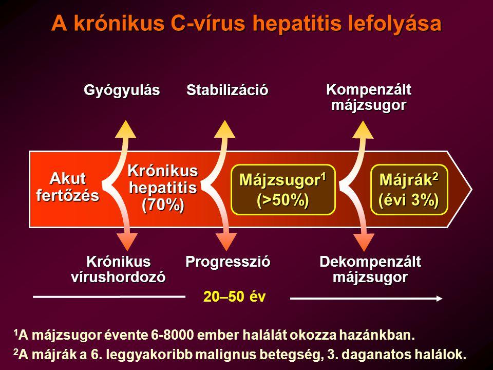 HCV fertőzöttek gyógyulási esélyei pegilált interferon + ribavirin kezeléssel 19921995199820112001 IFN 24 hét IFN 48 hét IFN+RBV 24 hét IFN+RBV 48 hét PegIFN+RBV 24-48-72 hét Tartós vírusmentesség (%) 0 10 20 30 40 50 60 70 G1 15% 25% 45% 60% 35% 5%