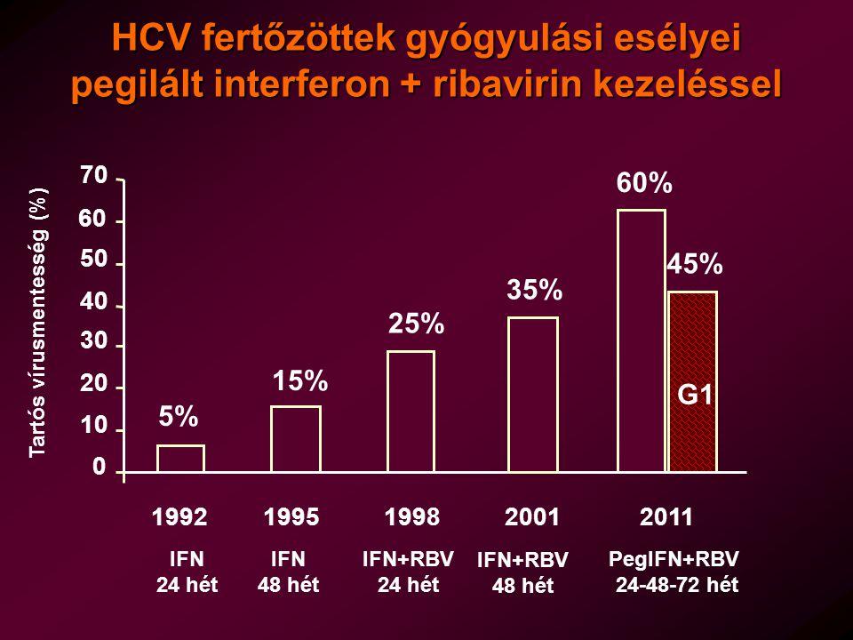 HCV fertőzöttek gyógyulási esélyei pegilált interferon + ribavirin kezeléssel 19921995199820112001 IFN 24 hét IFN 48 hét IFN+RBV 24 hét IFN+RBV 48 hét