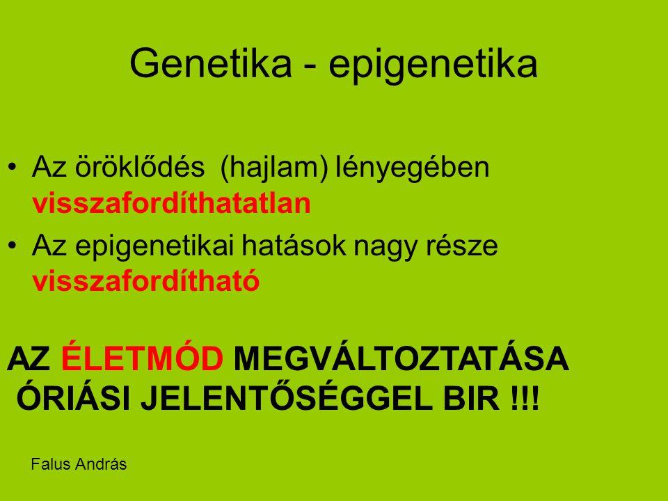 Genetika - epigenetika Az öröklődés (hajlam) lényegében visszafordíthatatlan Az epigenetikai hatások nagy része visszafordítható AZ ÉLETMÓD MEGVÁLTOZTATÁSA ÓRIÁSI JELENTŐSÉGGEL BIR !!.