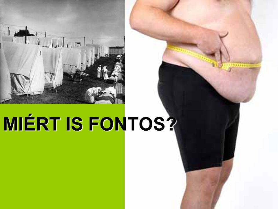 MIÉRT IS FONTOS?