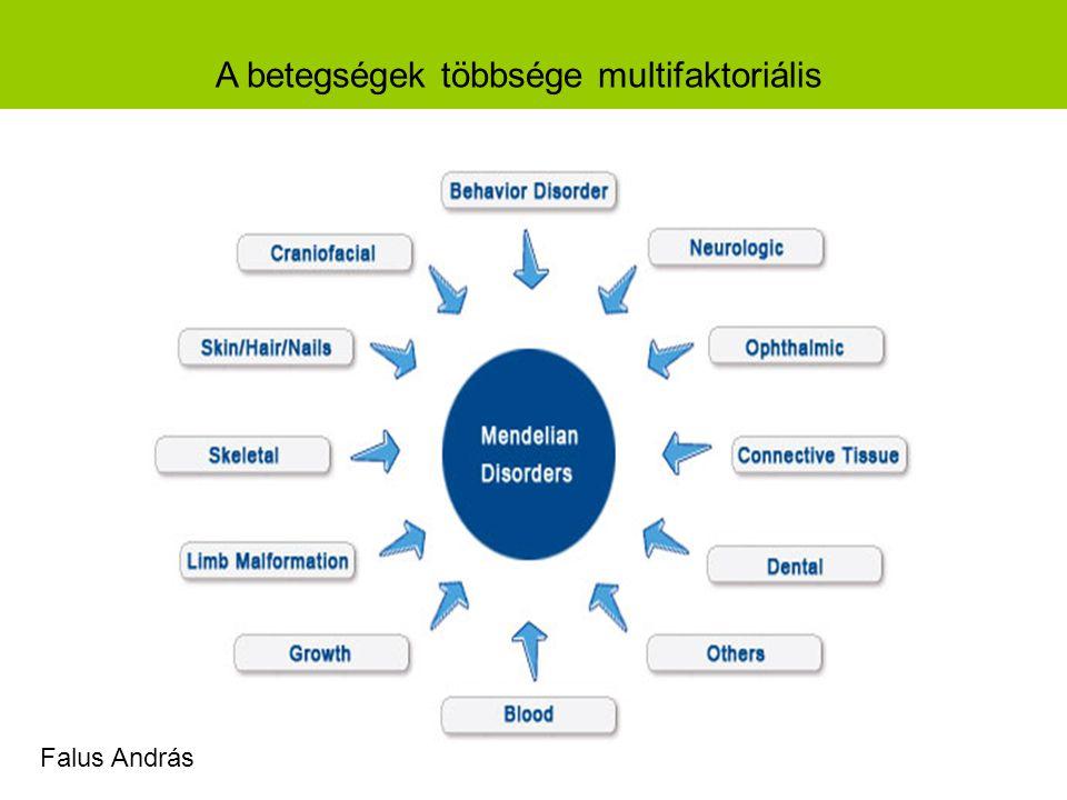 A betegségek többsége multifaktoriális Falus András